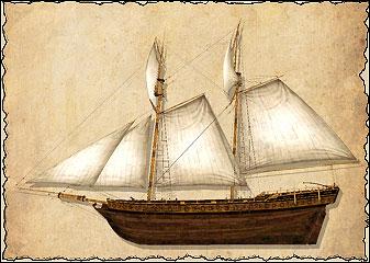 Шхуны — быстроходные суда, отлично подходящие для торговли и разведки. Они несут достаточно лёгких пушек, чтобы представлять угрозу торговым судам, особенно если шхун несколько. Именно поэтому их так охотно используют пираты: они объединяют несколько шхун в небольшую флотилию и нападают на грузовые суда без сопровождения