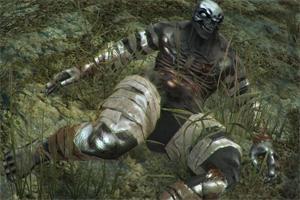 Этот тип наиболее сложный, хотя можно убить молотом. Относится к разряду мертвечины, один из сложных существ т.к. обладает большой жизненной энергией.