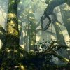 Ведьмак 2 Убийцы королей The Witcher 2 Пролог Глава 1 Локации