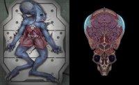 Xenonauts Виды пришельцев Часть 3